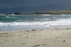 sea and beach 24 february