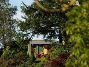 ROddy's photo of my studio in the autumn sun